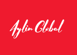 Aylin Global Business Consultants