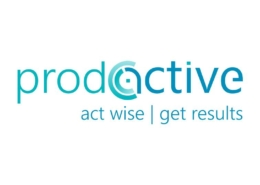 Prodactive Consulting